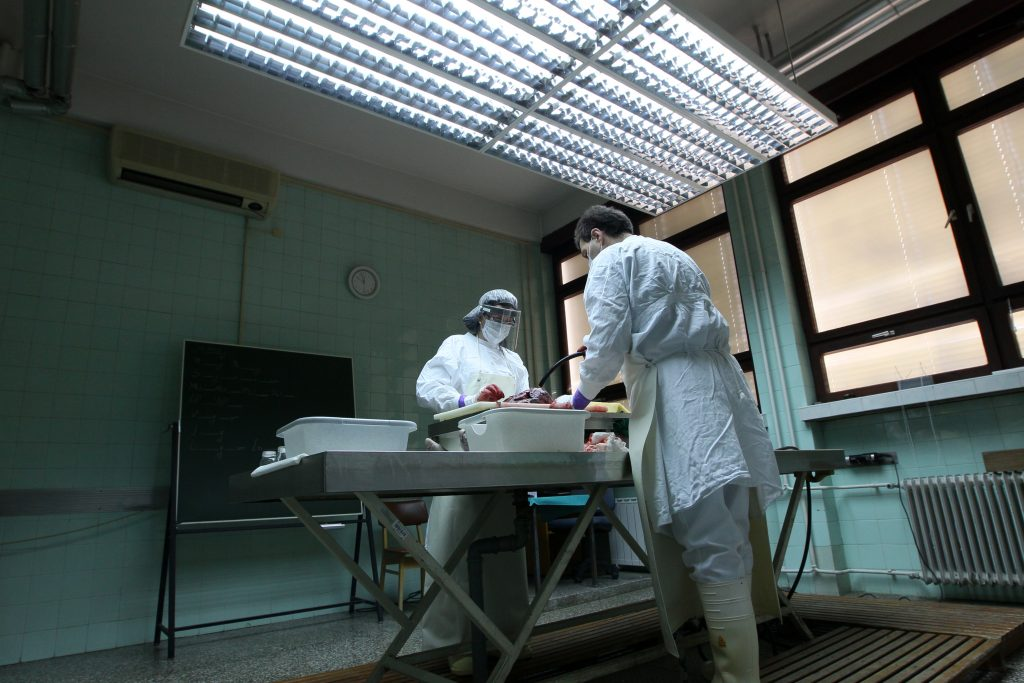 ЦРН ПЕТОК: Во велешката болница за 24 часа шестмина починати